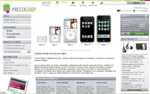 """Så här ser """"framsidan"""" på din webshop ut. Detta är vad dina kunder möter om de kommer till din webshop."""